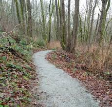 Alki Beach Trail West Seattle by West Seattle Blog U2026 It U0027s Your Forest Come Talk About Future West