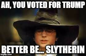 Hat Meme - the sorting hat knows imgflip