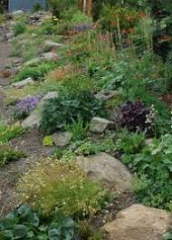 rock garden i will have the best house ever someday pinterest
