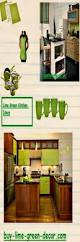 Decor Ideas For Kitchens Best 25 Lime Green Kitchen Ideas On Pinterest Lime Green Paints