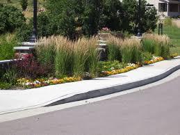 22 best using grasses images on ornamental grasses