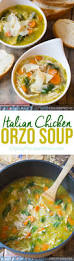 Italian Soup by Italian Chicken Orzo Soup A Spicy Perspective
