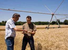 conseiller agricole chambre d agriculture des conseillers au service des agriculteurs conseil
