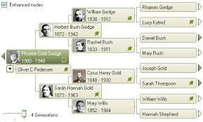 family tree maker the pedigree view ancestry