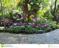 the beautiful backyard gardens beautiful backyards
