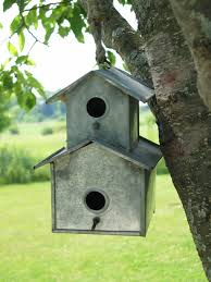 cool bird houses designs house design
