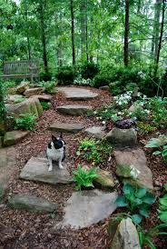 Landscape Design Backyard Ideas by Best 25 Natural Landscaping Ideas On Pinterest Outdoor Steps