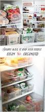 Pinterest Kitchen Organization Ideas 167 Best Fridge Freezer Organizing Images On Pinterest Kitchen