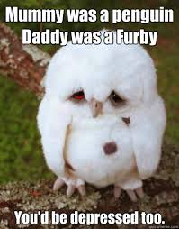 Cute Penguin Meme - mummy was a penguin daddy was a furby you d be depressed too