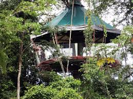 go out on a limb costa rica u0027s best tree houses