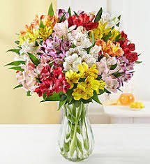 Free Vase Peruvian Lilies U0026 Alstroemeria Lily Delivery 1800flowers