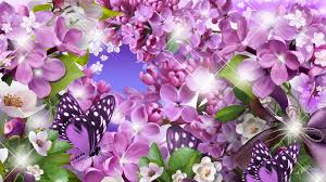 simplywallpapers com spring rapture floral lilacs glow