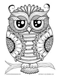 582 pattern owls images drawings coloring