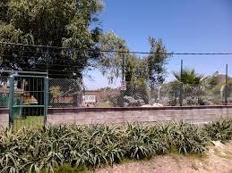 Privat Einfamilienhaus Kaufen Uruguay Immobilien Von Privat Haus Kaufen Montevideo Auswandern Nach