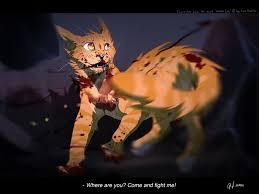 halloween cat background deviantart 803 best warrior cats images on pinterest warrior cats warriors