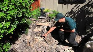 the waterfall guy tutorial 1 how to build a small backyard