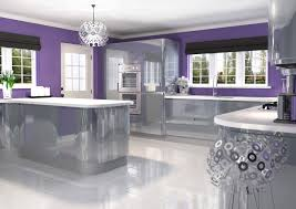 kitchen contemporary kitchen cupboard doors purple and black