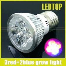 grow light bulbs lowes grow light bulbs lowes best plant light bulb cool a brief guide to