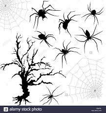 halloween black and white background halloween silhouette set of spiders spider nettings and old dried