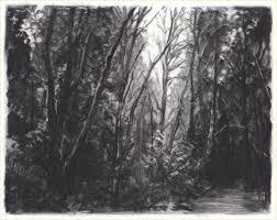 black friday denver colorado 151 best black u0026 white art images on pinterest drawing drawings