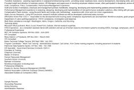 professional resume of it professional 50 most professional
