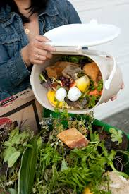 best 25 composting at home ideas on pinterest kitchen compost