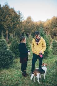 sara monika photographerchristmas tree farm engagement shoot