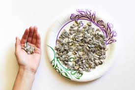 how to dry and season raw sunflower seeds 6 steps with pictures