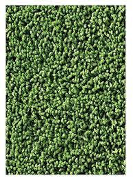 Grass Area Rug Carpets For Soft Solids Kidply Grass Green Area Rug Wayfair