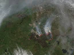 Alberta Wildfire Satellite Images by Study Finds A Connection Between Wildfires And Drought Nasa