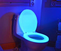 themed toilet seats nightglow toilet seat dudeiwantthat