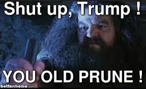 Meme Shut Up - hagrid shut up trump