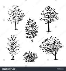 set hand drawn tree sketches vector stock vector 440603359