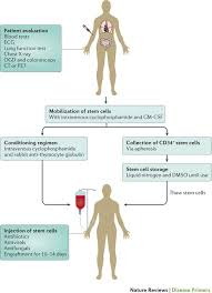 Testing Report Sle by Systemic Lupus Erythematosus Nature Reviews Disease Primers
