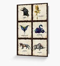fantastic beasts and where to find them greeting cards redbubble