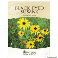 cheap seed packets black eyed susan seed packet american