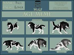 Border Collie Meme - age meme on wolvesoflunarforest deviantart