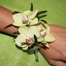 Orchid Corsage Green Orchid Corsage In Montchanin De Petals Flowers And Fine Gifts