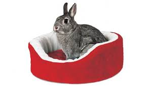 Rabbit Beds Pet Gift Guide The Best Christmas Presents For Dogs And Cats