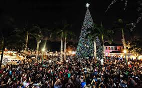 how many christmas lights per foot of tree the best christmas tree in every state people com
