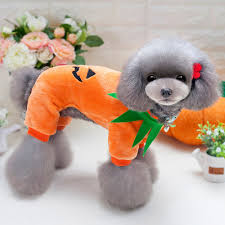 Halloween T Shirts For Dogs by Online Get Cheap Halloween Pet Pictures Aliexpress Com Alibaba