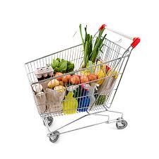 disney world orlando grocery delivery garden grocer