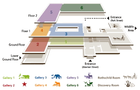 google floor plan maker museum floor plan design google search corporate office