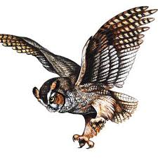 great horned owl tattoo tattoo collections