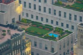 roof garden wikipedia