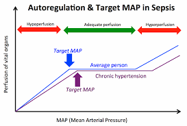 Blood Pressure Map Early Norepinephrine To Stabilize Map In Septic Shock