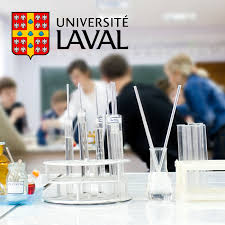 bureau international universit laval département de chimie de l université laval home