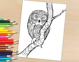 coloring book page owl in a tree coloring page for adults