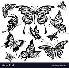 set of black and white butterflies royalty free vector image