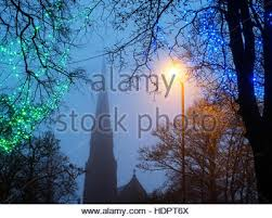 lights in trees on montpellier hill at dusk on a